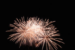 Fireworks Display White Royalty Free Stock Image