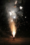 Fireworks. Exploding in the dark of night Royalty Free Stock Photos