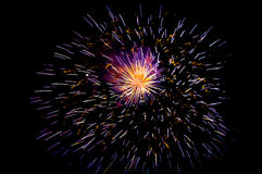 Fireworks. Exploding in the night sky Royalty Free Stock Photos