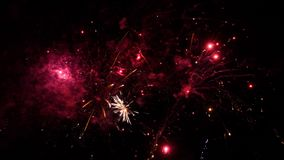 Fireworks exploding in various colors in the dark night sky stock video footage