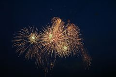 Fireworks explosions against the night sky.  royalty free stock image