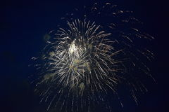 Fireworks explosions in the night sky Royalty Free Stock Photos