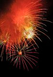 Fireworks of festival. It is colourful fireworks in the sky at night Stock Photography