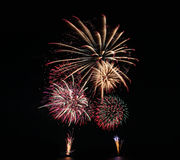 Fireworks or firecracker. Royalty Free Stock Image