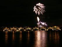 Fireworks flower Stock Image