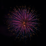 Fireworks on the fourth of July Royalty Free Stock Photography