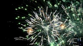 Fireworks stock footage