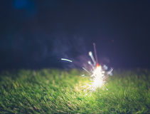 Fireworks and green grass Royalty Free Stock Photography