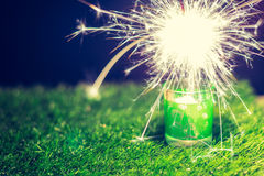 Fireworks and green grass Royalty Free Stock Photo
