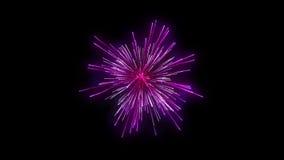 Fireworks holiday background, against black
