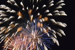 Fireworks. Holiday Fourth of July Fireworks Royalty Free Stock Images