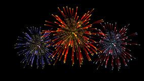Fireworks illustration Stock Image