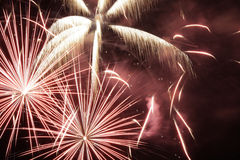 Free Fireworks In The Night Sky Royalty Free Stock Image - 3520216