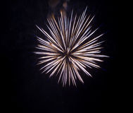 Fireworks isolated on a black background Royalty Free Stock Image