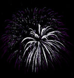 Fireworks Isolated Royalty Free Stock Photography