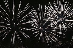 Fireworks from Italy team Royalty Free Stock Images