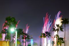 Close Up Fireworks in disney. Fireworks, light and palm tree in disney park Royalty Free Stock Images