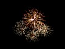 Fireworks. Light up the night sky Stock Photos