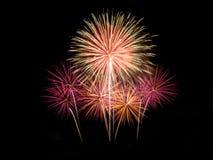 Fireworks. Light up the night sky Royalty Free Stock Photos