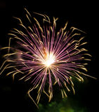 Fireworks light Stock Image