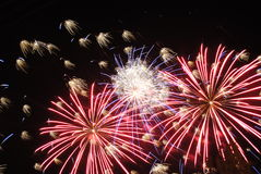 Fireworks light up the sky Stock Images