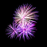Fireworks light up in the sky, dazzling scene. Royalty Free Stock Photo