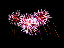 Fireworks light up in the sky, dazzling scene. Royalty Free Stock Images