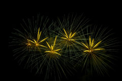 Fireworks light up the sky,Five Fireworks Stock Photography