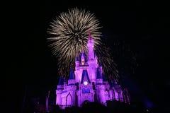 Fireworks in Magic Kingdom. Day in Magic Kingdom park Royalty Free Stock Photos