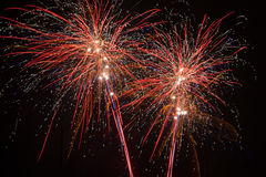 Fireworks in midnight skies at new years eve Royalty Free Stock Images