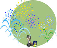 Fireworks of the midsummer-1 Royalty Free Stock Photo