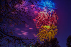 Fireworks multi-colored at night Stock Images