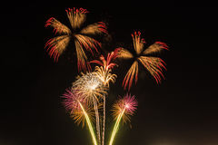 Fireworks. Multiple fireworks bursting in the night sky royalty free stock images