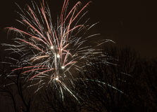 Fireworks - New Year 2014. Fireworks for New Year 2014 - Bucharest (IOR Park Royalty Free Stock Photo