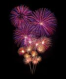 Fireworks new year celebration Stock Image
