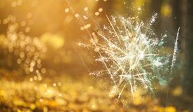 New Year concept. Fireworks at New Year and copy space - abstract holiday background Stock Photos