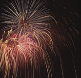Fireworks at night. Beautiful Fireworks for nighttime celebration Stock Photography