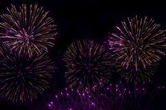 Fireworks Night Black background wallpapers.  royalty free stock photos