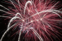 Fireworks at night. Colorful fireworks explosion in a dark night Stock Photos