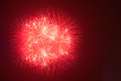 Fireworks in night dark sky Royalty Free Stock Photos