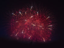 Fireworks in night dark sky Royalty Free Stock Image