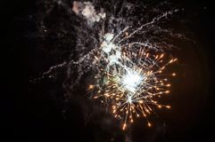 Fireworks in the night. Fireworks lights on the night sky background Stock Photos