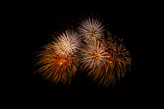 Fireworks in the night.New Year celebration fireworks,Colorful fireworks over dark sky, displayed during a celebration event. Fireworks in the night.Fireworks in Royalty Free Stock Photography
