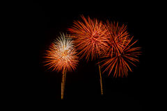 Fireworks in the night.New Year celebration fireworks,Colorful fireworks over dark sky, displayed during a celebration event. Fireworks in the night.Fireworks in Royalty Free Stock Photo