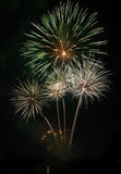 Fireworks Night Royalty Free Stock Image