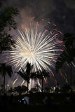 Fireworks at night Stock Photography