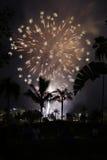 Fireworks at night Stock Photo