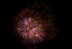 Fireworks at Night. Shot of fireworks against a black background Royalty Free Stock Photos