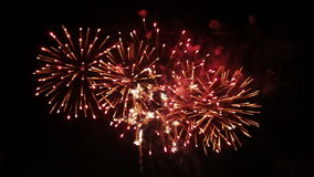Fireworks. In the night sky
