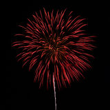 Fireworks in the night sky background Stock Photo